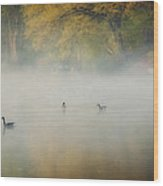 River At Sunrise Wood Print by Everet Regal