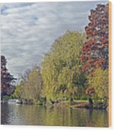 River Avon In Autumn Wood Print