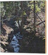 River Beneath The Trees Wood Print
