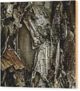River Birch Detail Wood Print