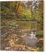 River Blyth In Autumn Vertical Wood Print