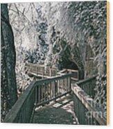 River Boardwalk Wood Print