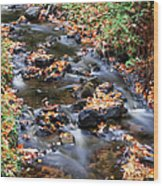 River Cascades Wood Print