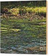 River Colors Wood Print
