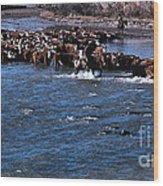River Crossing Wood Print