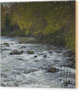 River Don Wood Print