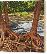 River Wood Print by Elena Elisseeva
