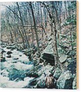 River Flowing Through A Valley, Hudson Wood Print