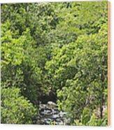 River Glimpses Wood Print