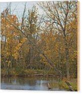 River In Autumn Wood Print by Rhonda Humphreys