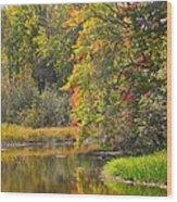 River In Fall Wood Print