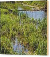 River Kennet Marshes Wood Print