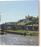 River Main With Fortress - Wuerzburg Wood Print