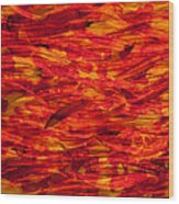 River Of Fire Wood Print
