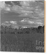 River Of Grass Wood Print by Andres LaBrada