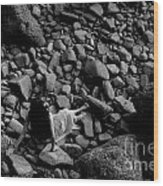 River Of The Stones  Wood Print