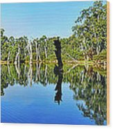 River Panorama And Reflections Wood Print