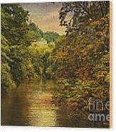 River Path Wood Print