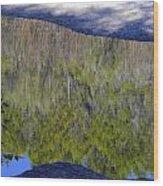 River Reflection Wood Print