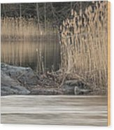 River Rock And Reeds Wood Print