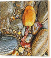 River Rocks 8 Wood Print