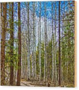River Run Trail At Arrowleaf Wood Print