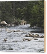 River Runs Through It Wood Print