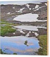 River San Juan And Lakes At Sunset Wood Print