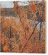 River Side Foliage Autumn Wood Print