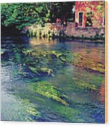 River Sile In Treviso Italy Wood Print