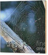 River Spider Web   Wood Print