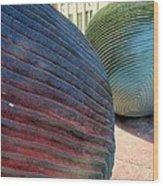River Stones - New Orleans La Wood Print