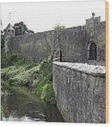 River Suir And Cahir Castle Wood Print