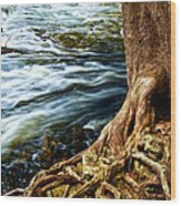 River Through Woods Wood Print