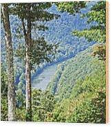 River Thru The Trees Wood Print