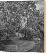 River Tranquility Monochrome Wood Print