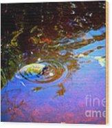 River Turtle Wood Print