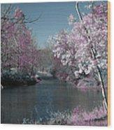 River View Wood Print