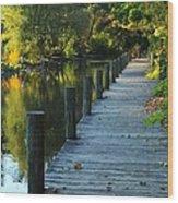 River Walk In Traverse City Michigan Wood Print by Terri Gostola