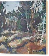 River Woods Wood Print