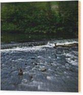 River Wye Waterfall - In Peak District - England Wood Print