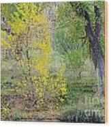Riverbank Colors Wood Print