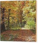 Riverside Colors 4 Wood Print