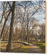 Riverwalk Wood Print