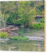 Riverwalk Park II Wood Print