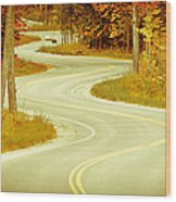 Road Bending Through The Trees Wood Print
