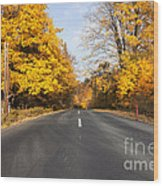 Road In Autumn Forest Wood Print