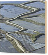 Road In Saltmarshes, Guérande Wood Print