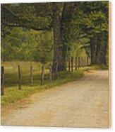 Road In The Smokies Wood Print by Andrew Soundarajan