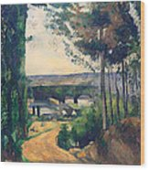 Road Leading To A Lake Wood Print
